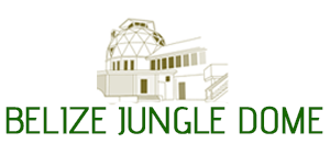 jungle-dome3